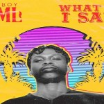 Fireboy DML – What If I Say (Prod. by Pheelz)