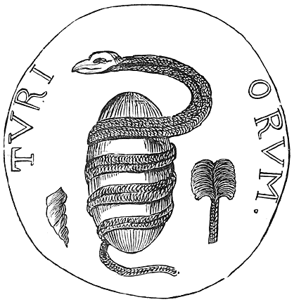 Serpent and Egg (Tyre).