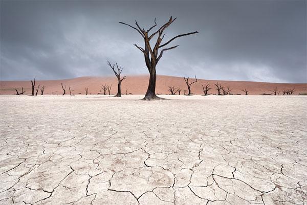 landscapes of dead