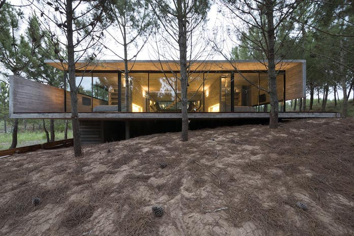 Modern Concrete House In A Forest