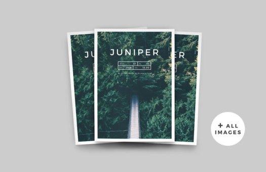 Juniper magazine and portfolio template for Adobe InDesign.