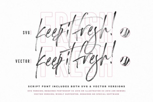 The script font includes a SVG and vector version.