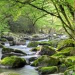 Природный парк Смоки Маунтинс