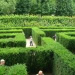 Знаменитые лабиринты в парке Шенбрунн