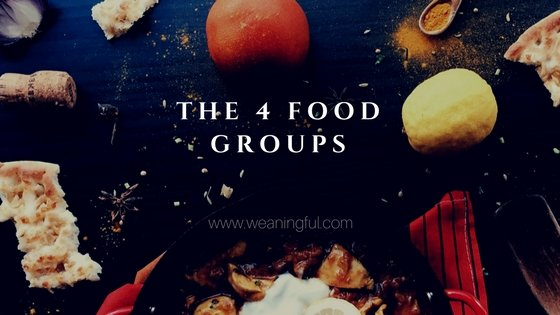 Food groups and baby nutrition