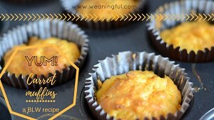 baby led weaning carrot muffins