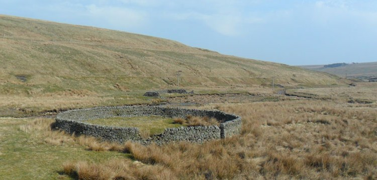 A well preserved circular sheepfold and rectangular fold in ruins either side of the Rookhope Burn.  Their washfold was swept away by the Burn around 1990.