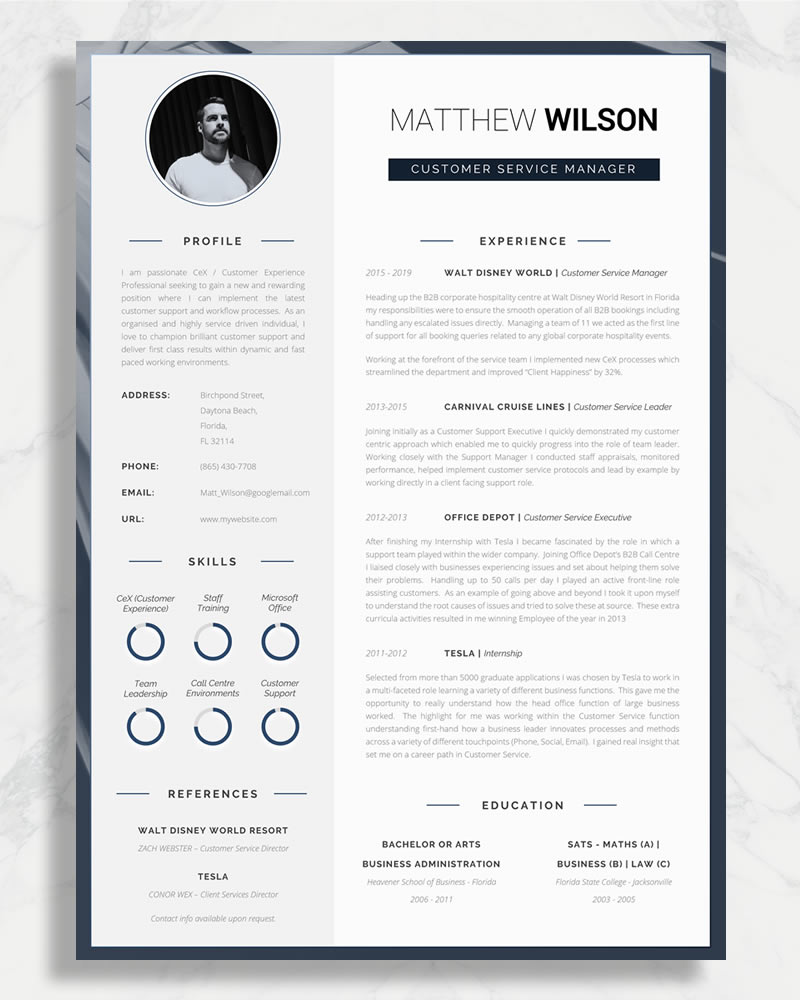 example of a great cv