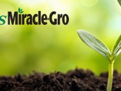 Scotts Miracle-Gro Company