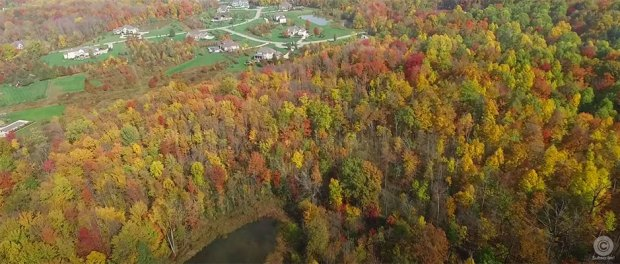 Aerial footage of fall colors at Lake Metroparks