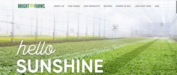 BrightFarms home page screenshot Hello Sunshine