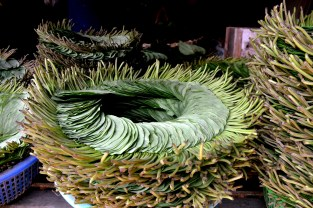 Betel leaf stacked in an intricate pattern