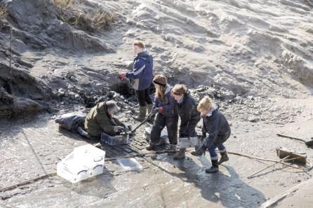 Digging and sifting the mud