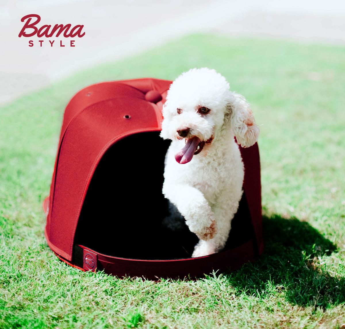 Social 1- Bama Style Pups
