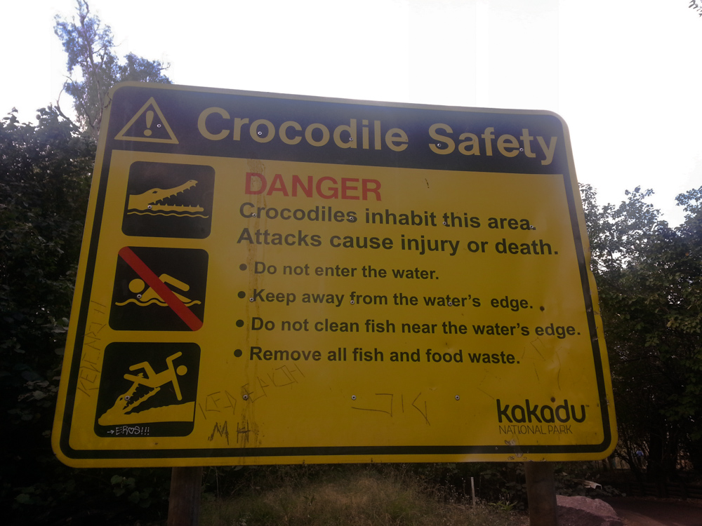 In Australia state attenti ai coccodrilli!