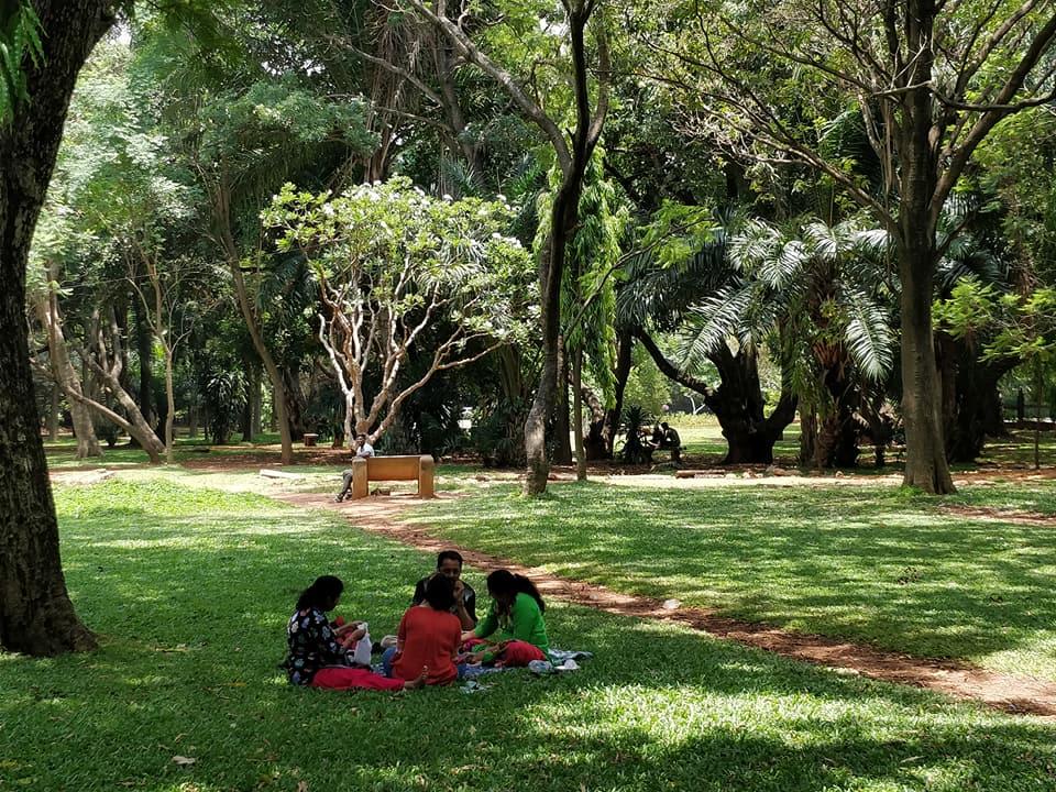 Cubbon Park:  relax domenicale a Bangalore
