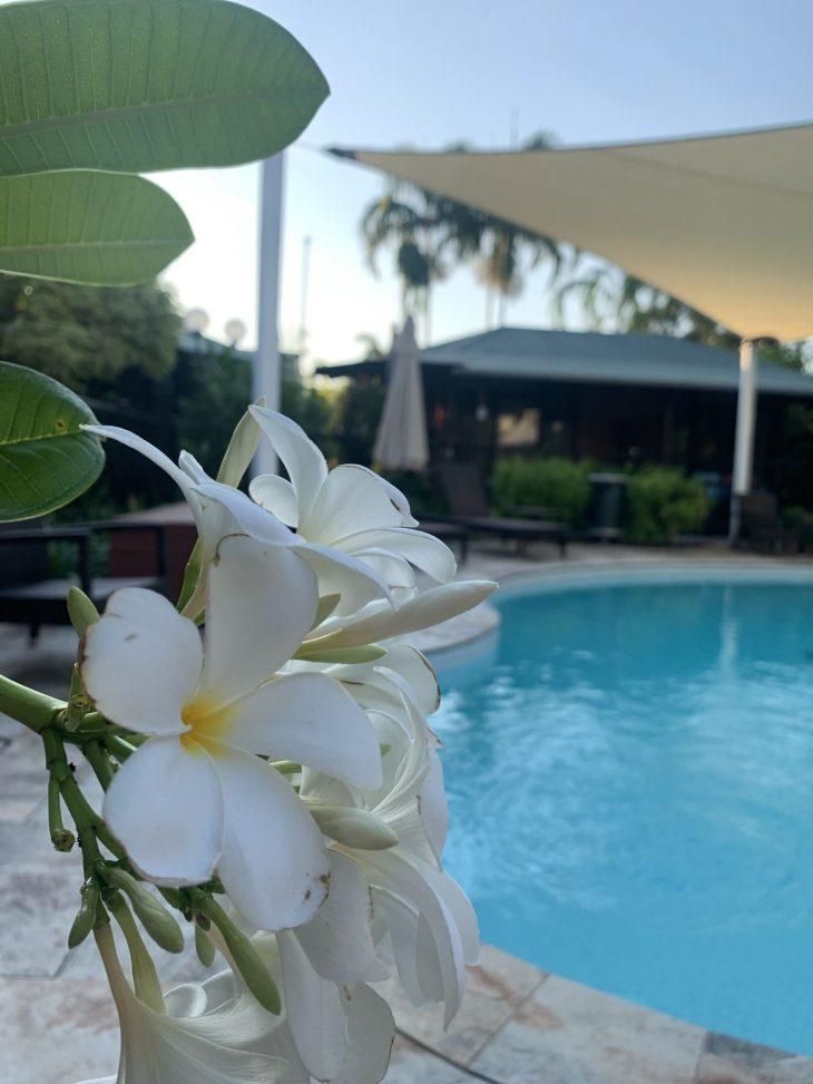 Palms City Resort pool