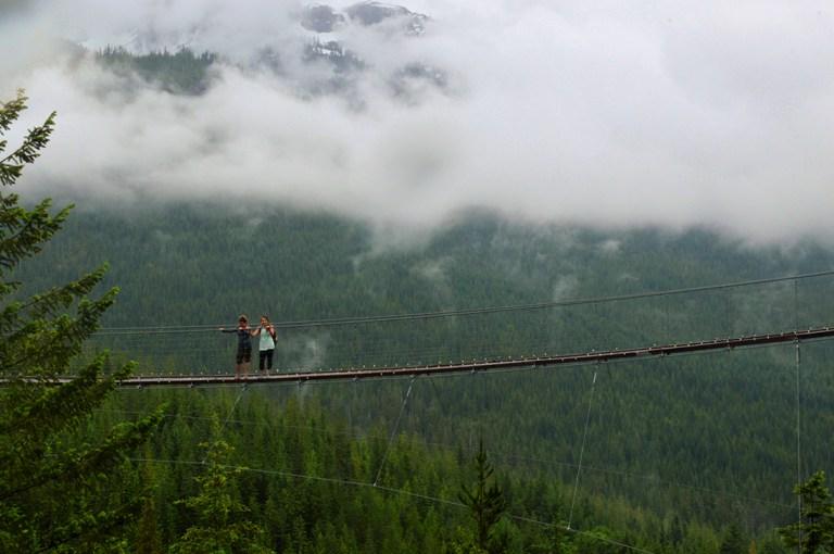 INSTA Forest Bridge Small