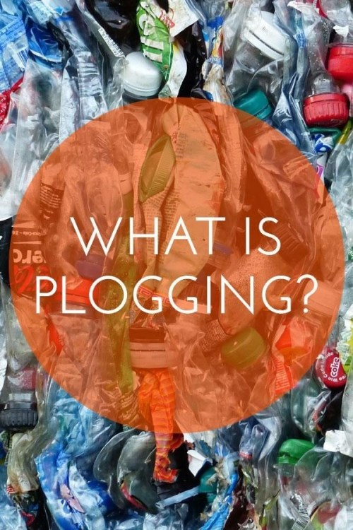 What Is Plogging Quote