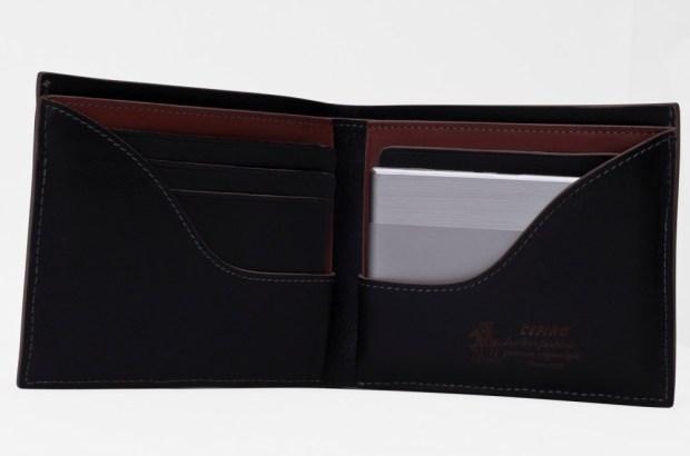 batterie-carte-de-credit-2