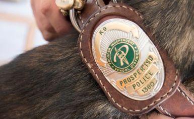 Prosper Schools Get New Police Officer