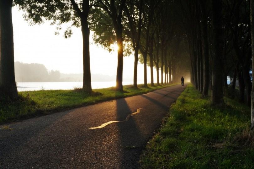 Een eenzame fietser in de ochtendgloren op de dijk langs het Amsterdam-Rijnkanaal
