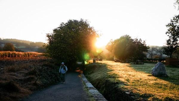 een man loopt op het bospad met de opkomende zon op de actergrond