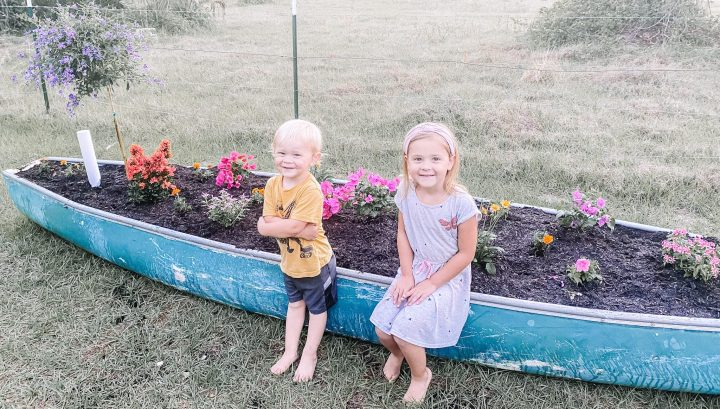 How To Make Your Own Wicking Bed Flower Garden