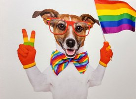Realistic drawing of a smiling dog with gloved anthropomorphic hands, holding a pride flag and making a peace sign.
