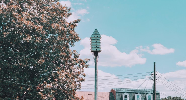 A martin birdhouse sits on a pole high above the ground in Charles Town West Virginia.