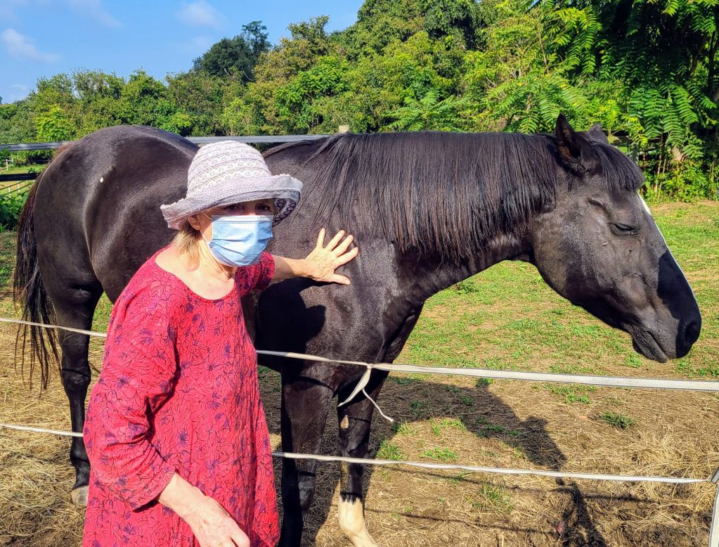 Franklyn, (above, with Sara) provides a home for 9 adopted horses on her farm in Harpers Ferry.