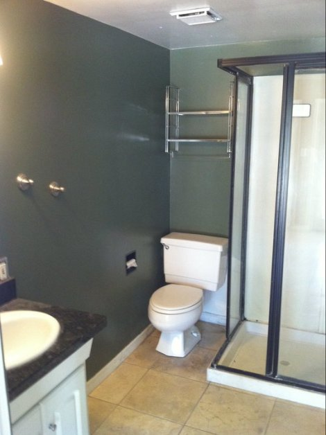 Existing Guest Bathroom