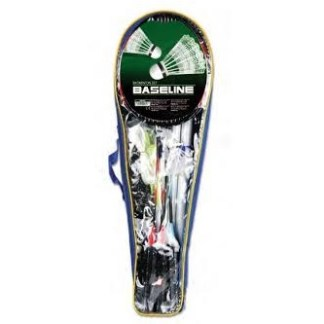wb badminton set