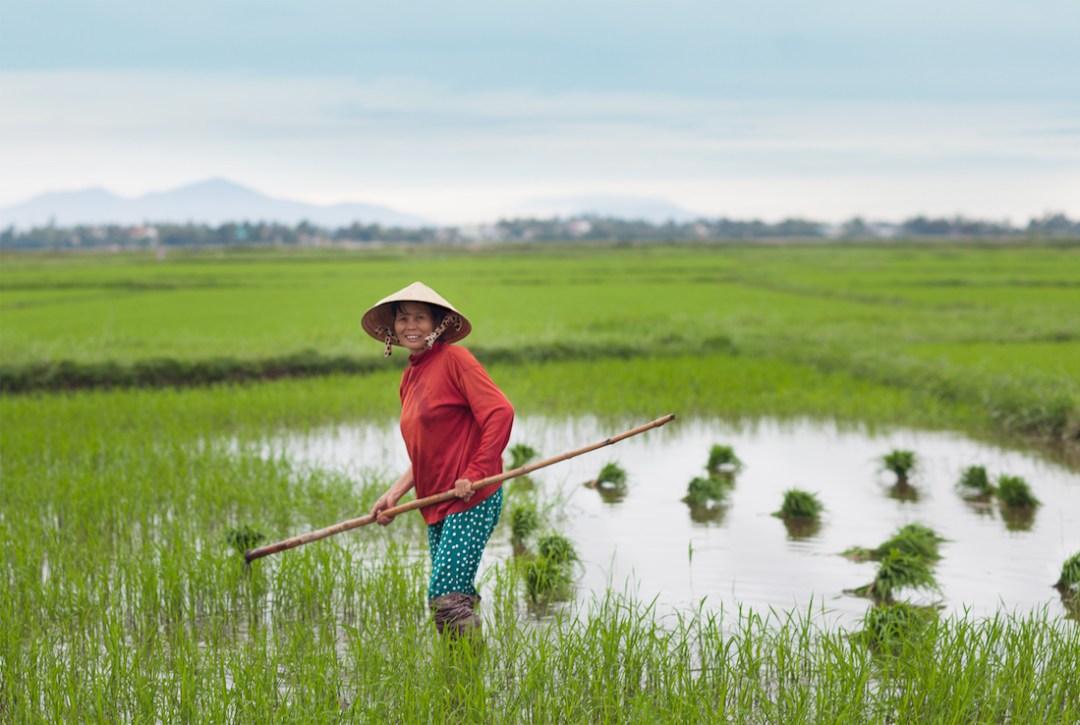 QFB-HoiAN-Vietnam-2