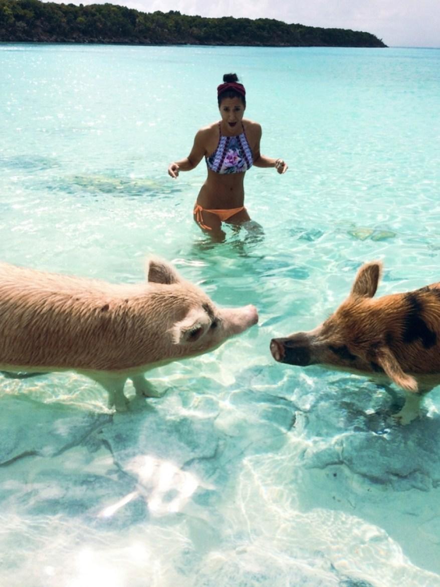 Adventuring Through The Cays, The Exumas