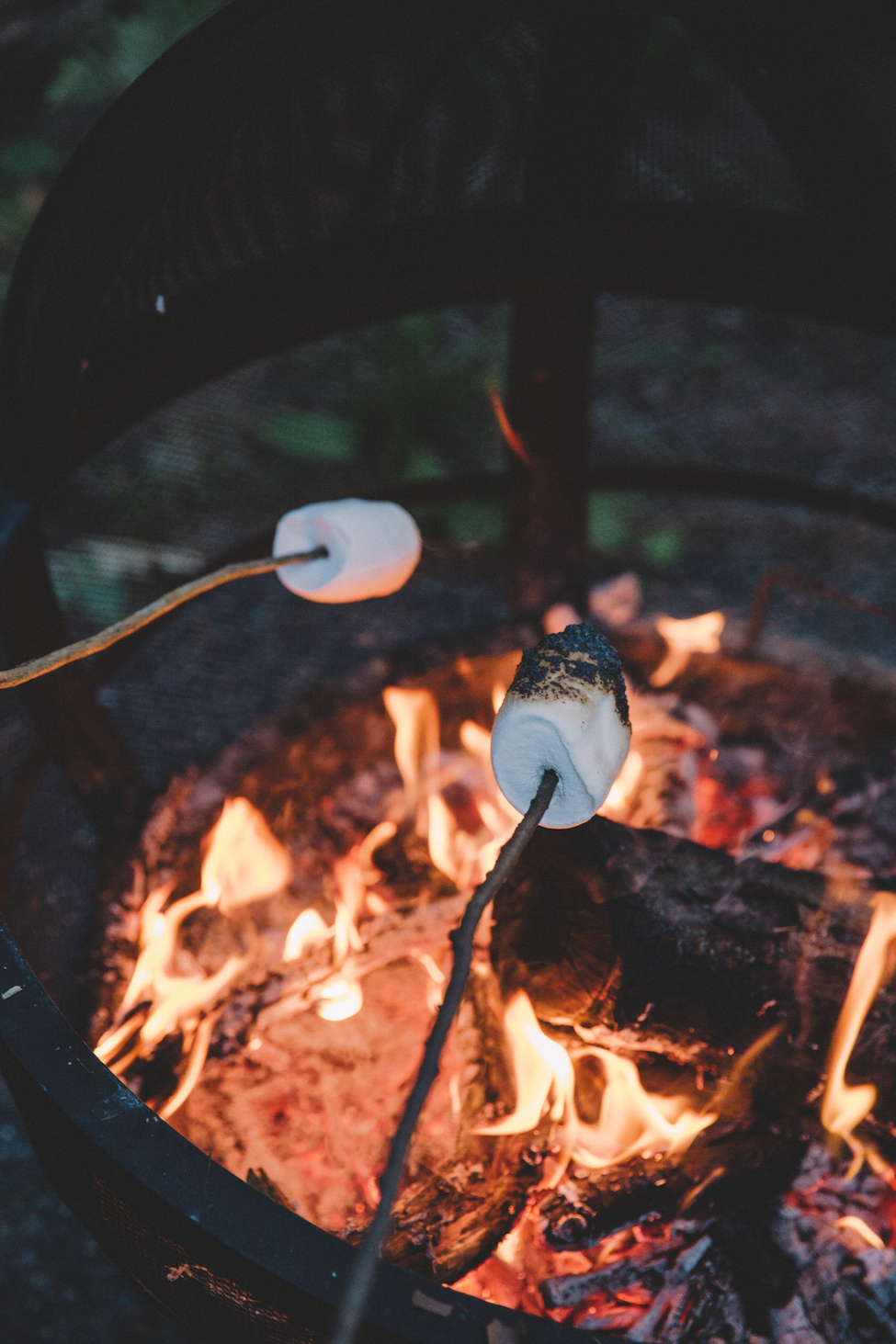 campfire-marshmellows