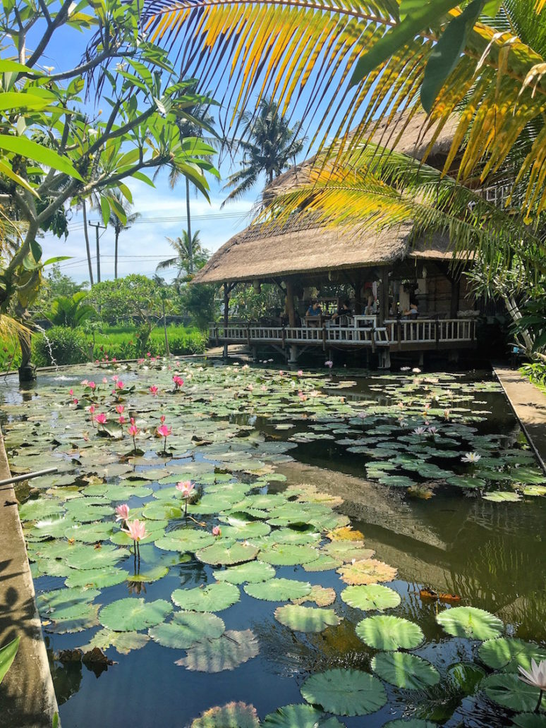 ubud-bali-things-to-do-we-are-travel-girls-20