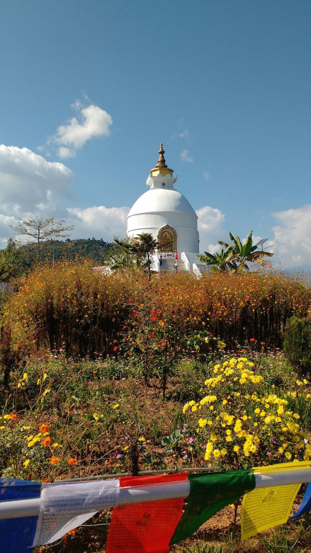 world-peace-pagoda-nepal