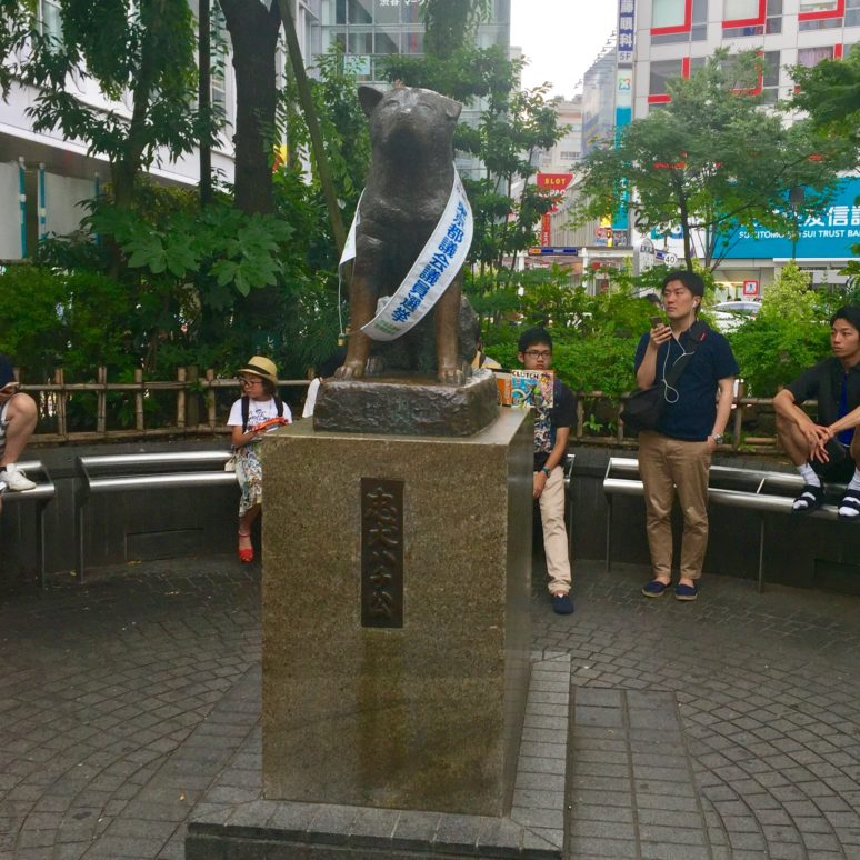 Tokyo-Hachiko 9 OFF THE BEATEN PATH THINGS TO DO IN TOKYO, JAPAN