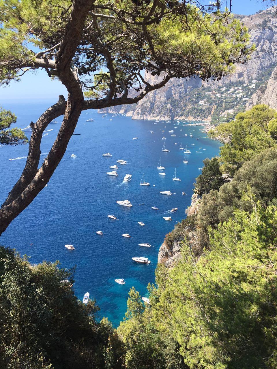 24 hours in Capri, Land of Lemons