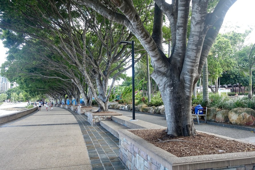 9 Reasons To Visit Brisbane