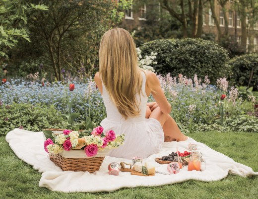 GARDEN PICNIC WITH LIGHT & FREE