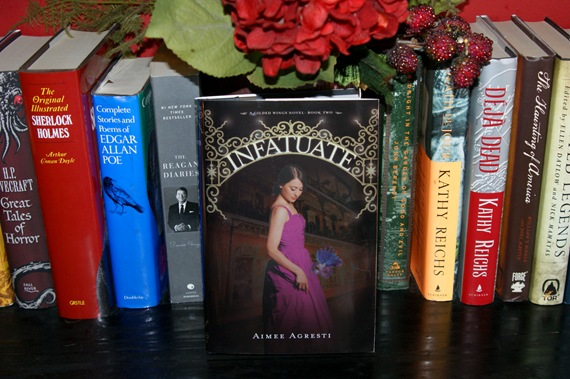 Infatuate: A Gilded Wings Novel, Book Two by Aimee Agresti