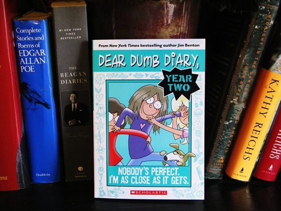 Dear Dumb Diary Year 2 - Nobodys Perfect