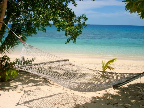 admire the cloudless blue sky from the hammock