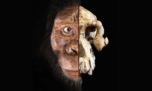 Wy holbewoaners: sint de neanderdalers uutstörven döär leevde en nit döär oorlog?