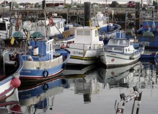 Fishing boats1