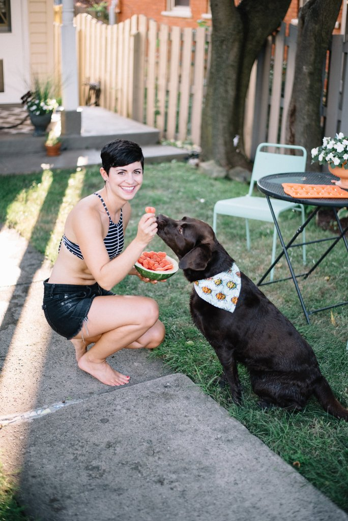 Make Frozen Watermelon Treats That Your Dog will Love
