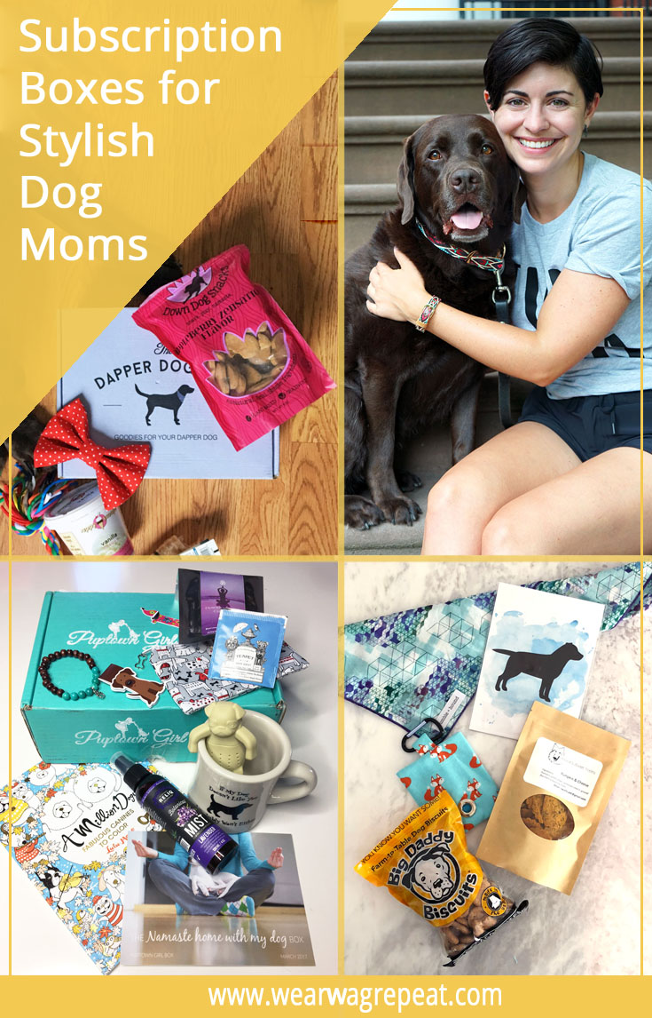 The Best Subscription Boxes for Stylish Dog Moms