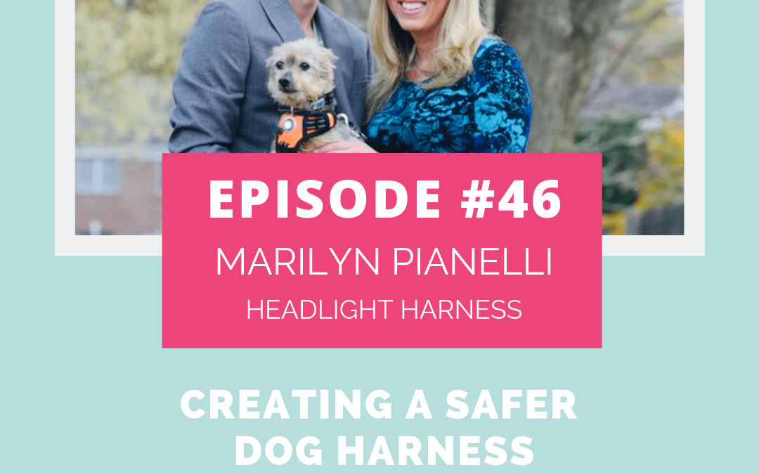 Podcast Episode 046: Creating a Safer Dog Harness with Marilyn Pianelli of Headlight Harness